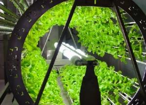 Green Wheel - Space Ship Application