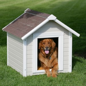 dog-house-designs-cold-climate