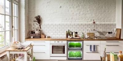 Kitchen of The Future – New York School of Interior Design
